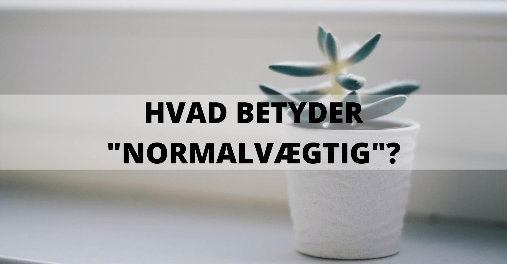 HVAD-BETYDER-_NORMALVÆGTIG__-1